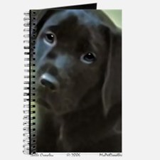BlackLabPuppy2006 Journal