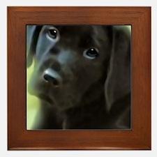 BlackLabPuppy2006 Framed Tile