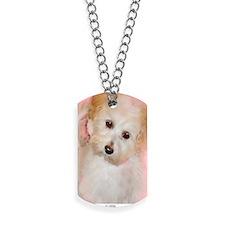 Maltipoo Dog Tags