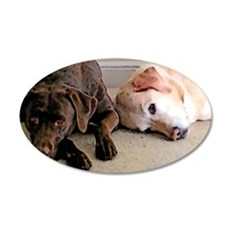 ScoutBudSnoozing 35x21 Oval Wall Decal