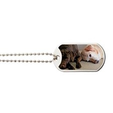 ScoutBudSnoozing Dog Tags