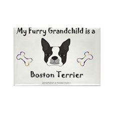 BostonTerrier Rectangle Magnet