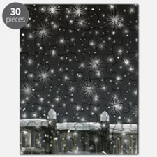 snow at night Puzzle