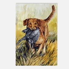 Chessie w Ph Master for C Postcards (Package of 8)