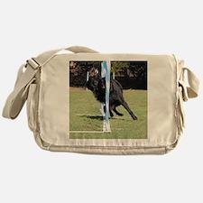 RigelWeaving322 Messenger Bag