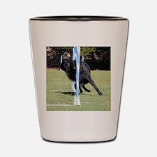 RigelWeaving322 Shot Glass