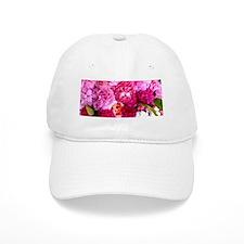 persian roses 1 mug Baseball Cap