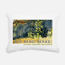 bigbend_basin Rectangular Canvas Pillow