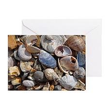 Shell selection, Lepe - bag Greeting Card