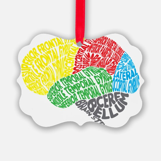 Your Brain (Anatomy) on Words Ornament