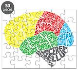 Brain lobes Puzzles
