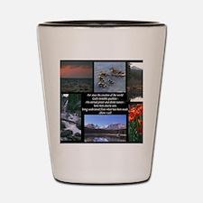 Rom1-20 Shot Glass