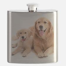 Kozzi-Dog-Buddies-7240x5433 Flask