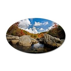 ASHEVILLE_v2_DeJidas_1146_16 35x21 Oval Wall Decal
