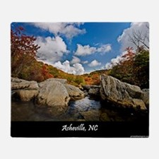 ASHEVILLE_v2_DeJidas_1146_16x20 Throw Blanket
