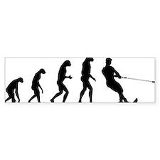 evolution15 Bumper Sticker