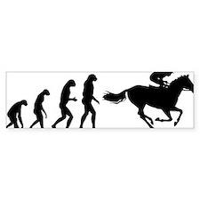 evolution49 Bumper Sticker