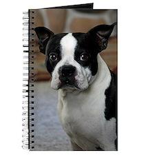 Boston Terrier 2 Journal