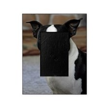 Boston Terrier 2 Picture Frame