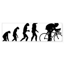 evolution51 Bumper Stickers