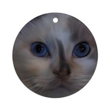 Funny Tortoise shell cat Ornament (Round)