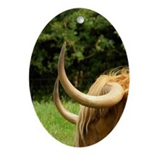 Highland cow. Oval Ornament