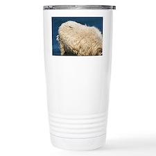 Sheep, Northumberland, England Travel Mug