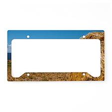 (1) Hay Shasta 2 License Plate Holder