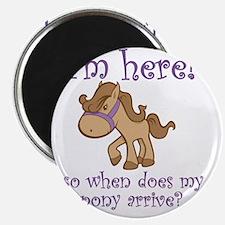 PonyArrive_Purple Magnet