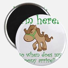 PonyArrive_Green Magnet