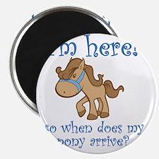 PonyArrive_Blue Magnet