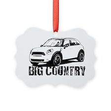 Big Country copy Ornament