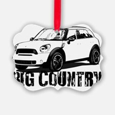 Big Country copy Ornament