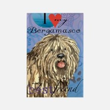 bergamasco-card Rectangle Magnet