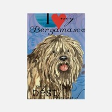 bergamasco-journal Rectangle Magnet