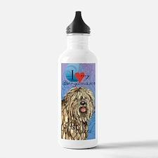 bergamasco-journal Water Bottle