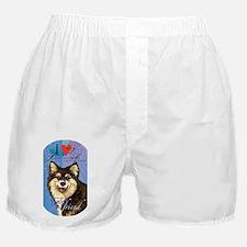FinLapT Boxer Shorts