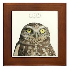 fun-birding-tours-dark-2 Framed Tile