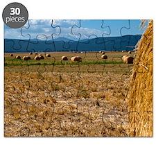 (15s) Hay Shasta 2 Puzzle