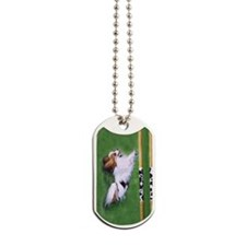 red agility Dog Tags