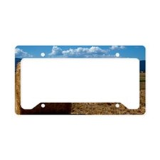 (1) Hay Shasta 3 License Plate Holder