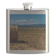 (15s) Hay Shasta 3 Flask