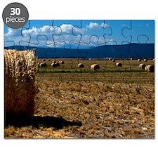 (15s) Hay Shasta 3 Puzzle