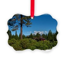(16) Shasta Trucker Ornament