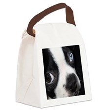 BT BE coin Canvas Lunch Bag