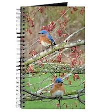 BB6.606x9.86SF Journal