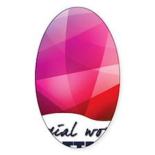 SWM-Logo16x20 Decal