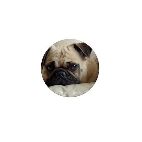13 330-Estrella_Luna-Phoebe-cutie(2300 Mini Button