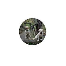 13 244-dukesmommy22-Duke  Paisley-100_ Mini Button