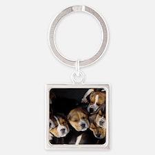 Beagle Pups Square Keychain